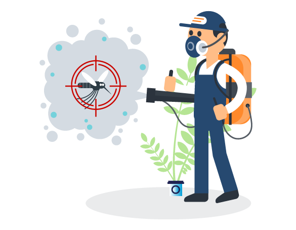 Professional Pest Control Indooroopilly